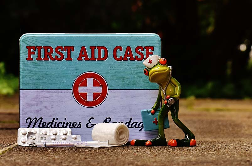 medical frog and first aid tin